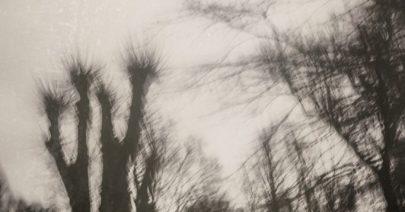 bottelethphotography-2016-4736