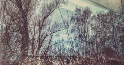 bottelethphotography-2016-5455