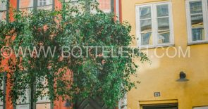bottelethphotography-2017-4552 2