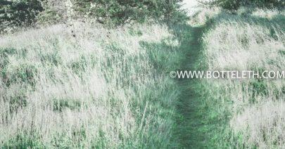 bottelethphotography-2017-4257