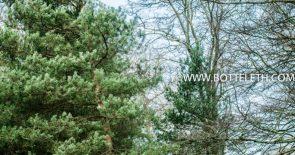 bottelethPhotography-2018-8691