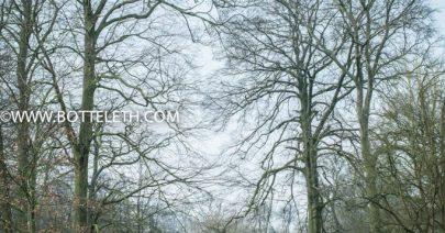 bottelethPhotography-2018-8597