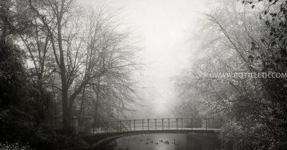 bottelethPhotography-2018-0657